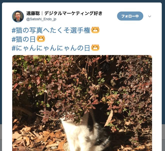 Twitter 猫の日ハッシュタグ